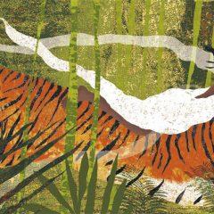 Cuore di tigre: come parlare di violenza e abusi ai bambini